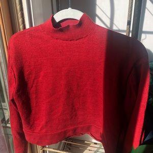 Everlane Cashmere Cropped Mockneck Sweater